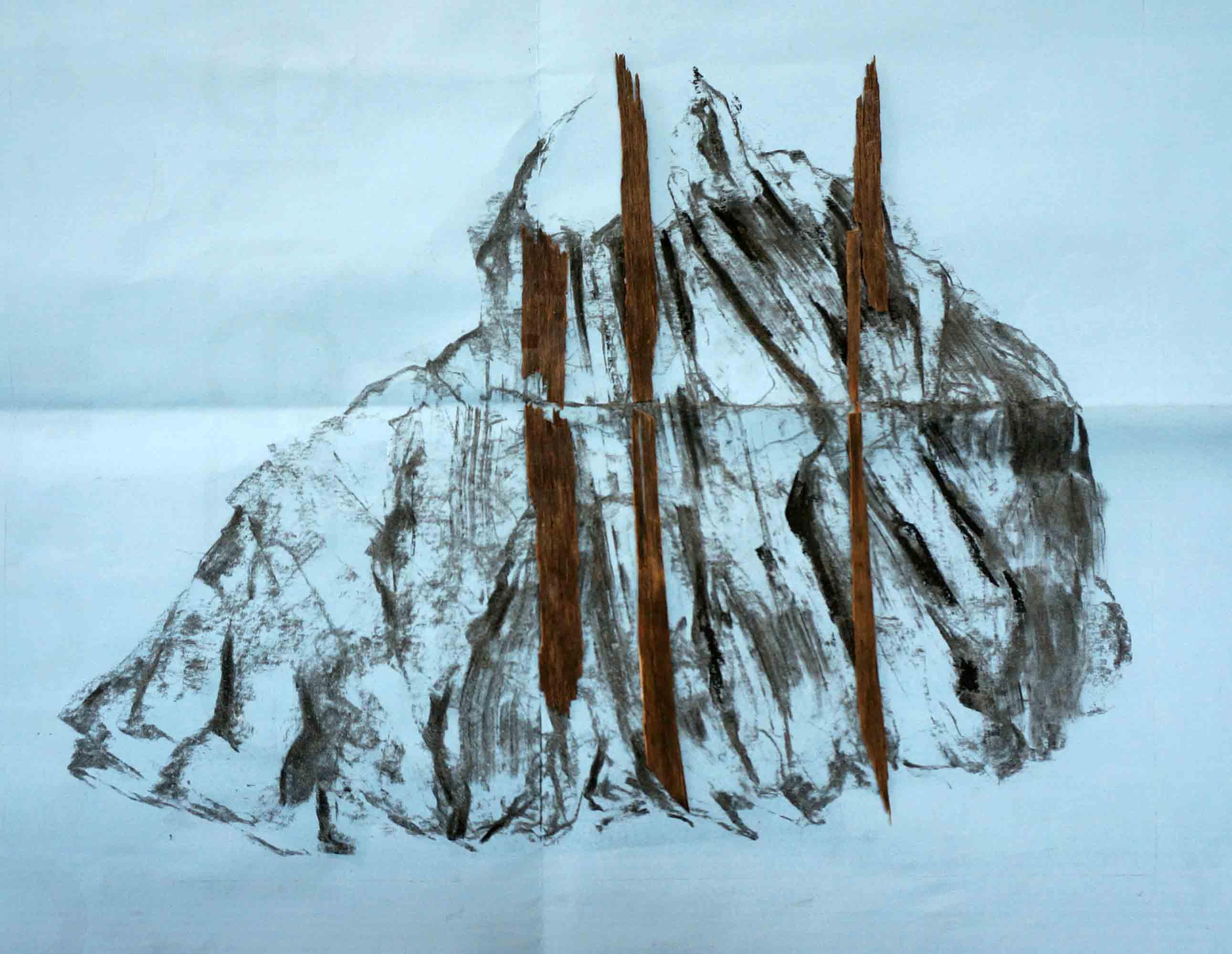Les vraies épines - 2014 – Fusain, bois. 40 x 21 cm. Denis Falgoux