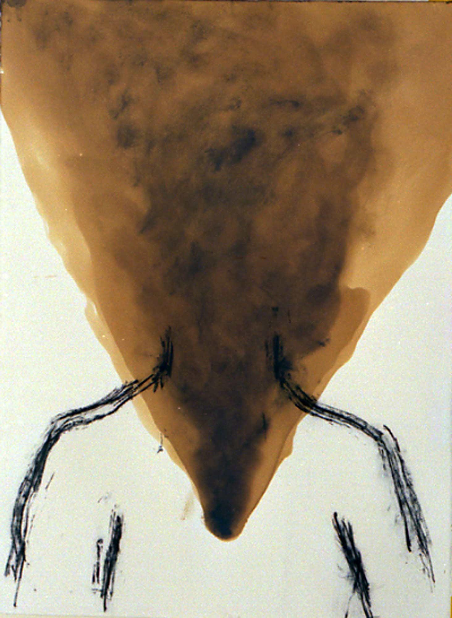 Fumée de paille - 1988 – Goudron, fusain. 50 x 65 cm. Denis Falgoux. Collection particulière.