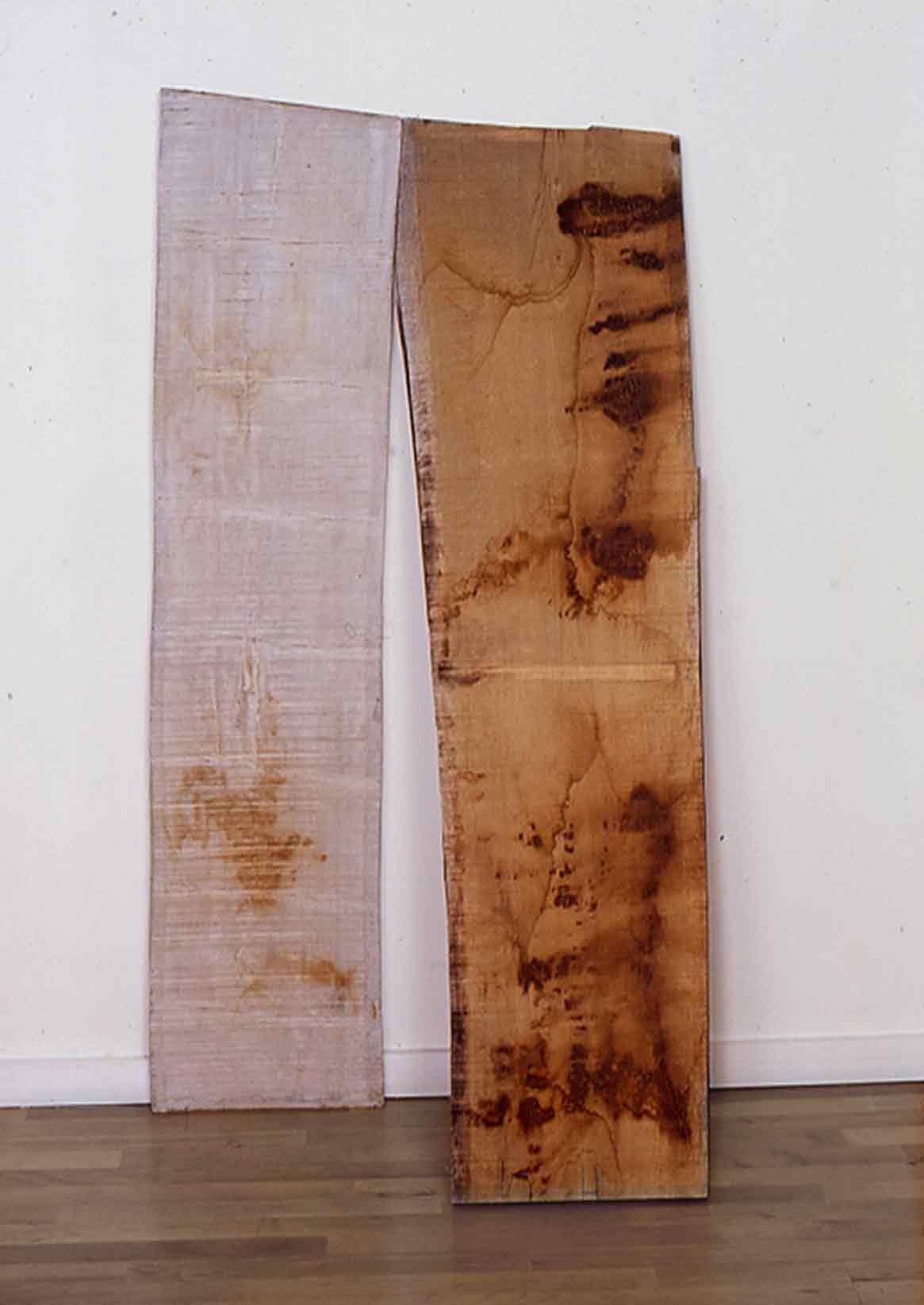 Sculpture bandée - 1998 – Bois, tarlatane. 80 x 88160 x 20cm. Denis Falgoux
